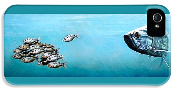 Tampa Bay Tarpon IPhone 5 Case