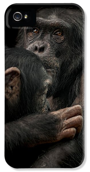 Tenderness IPhone 5 Case by Paul Neville