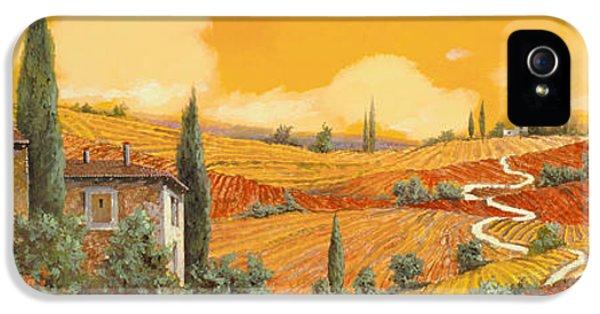 terra di Siena IPhone 5 Case by Guido Borelli