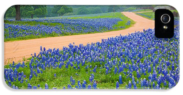 Bluebonnets iPhone 5 Case - Texas Country Road by Inge Johnsson