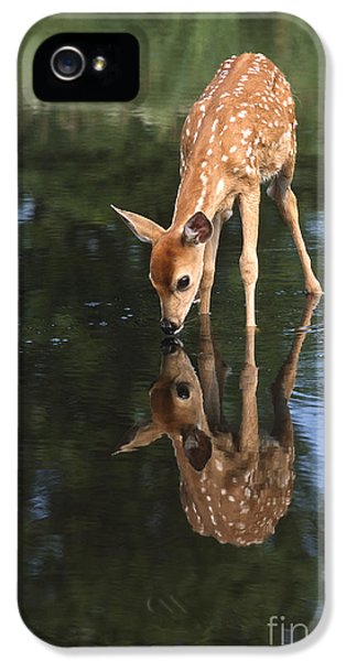 That Must Be Me IPhone 5 Case by Sandra Bronstein