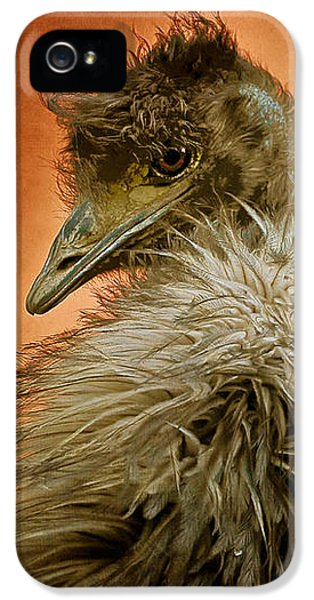That Shy Come-hither Stare IPhone 5 Case by Lois Bryan