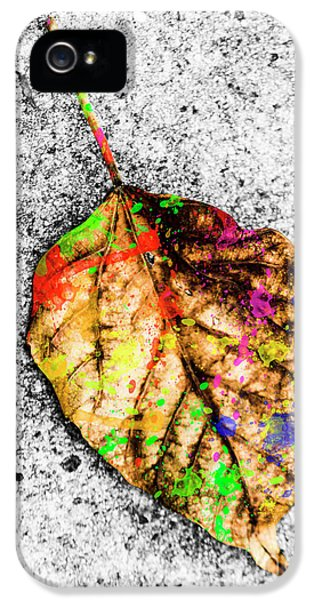 The Art Of Nature IPhone 5 Case by Jorgo Photography - Wall Art Gallery