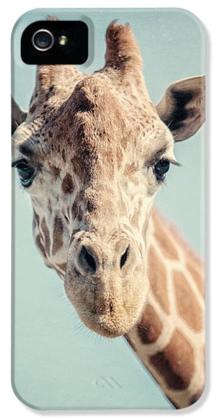 The Baby Giraffe IPhone 5 Case by Lisa Russo