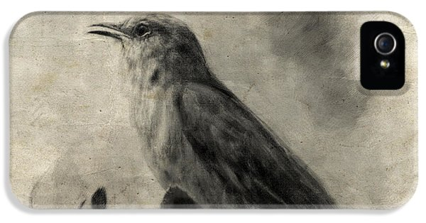 The Call Of The Mockingbird IPhone 5 Case by Jai Johnson