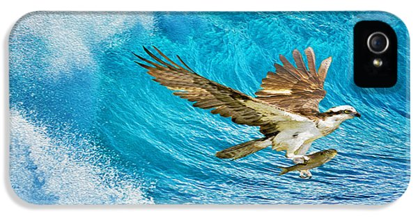 Osprey iPhone 5 Case - The Catch by Laura D Young