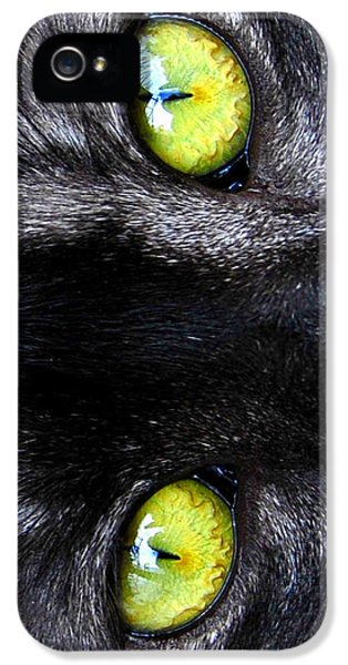 The Cat's Eyes IPhone 5 Case by David Lee Thompson