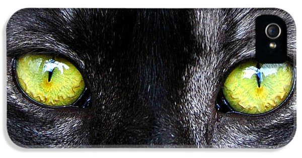 The Cat's Eyes Horizontal IPhone 5 Case by David Lee Thompson