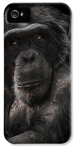 Ape iPhone 5 Case - The Contender by Paul Neville