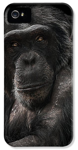 The Contender IPhone 5 / 5s Case by Paul Neville