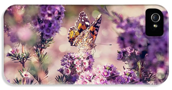 IPhone 5 Case featuring the photograph The First Day Of Summer by Linda Lees