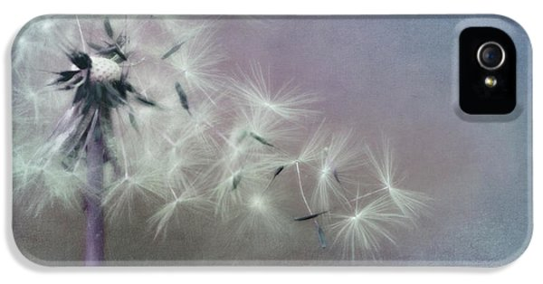 The Four Winds IPhone 5 Case by Priska Wettstein