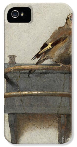 The Goldfinch, 1654  IPhone 5 Case by Carel Fabritius