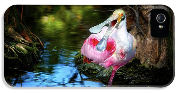 The Happy Spoonbill IPhone 5 Case by Mark Andrew Thomas