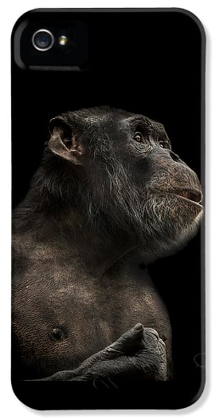 Ape iPhone 5 Case - The Hitchhiker by Paul Neville