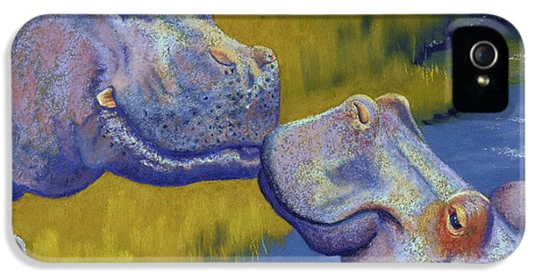 Water iPhone 5 Cases - The Kiss - Hippos iPhone 5 Case by Tracy L Teeter