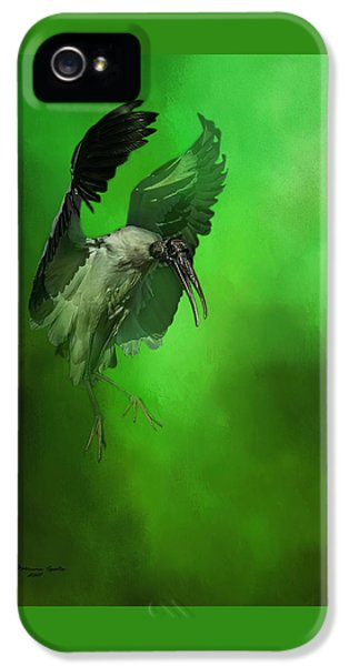 The Landing IPhone 5 Case by Marvin Spates