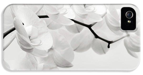 The Last Orchid IPhone 5 / 5s Case by Wim Lanclus
