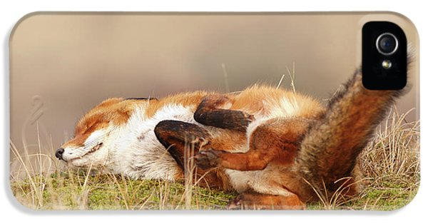 The Laughing Fox IPhone 5 Case