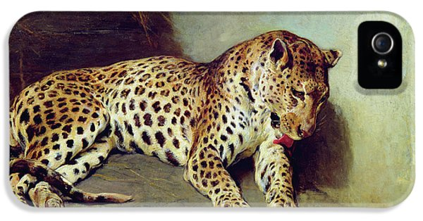 The Leopard IPhone 5 Case by John Sargent Noble