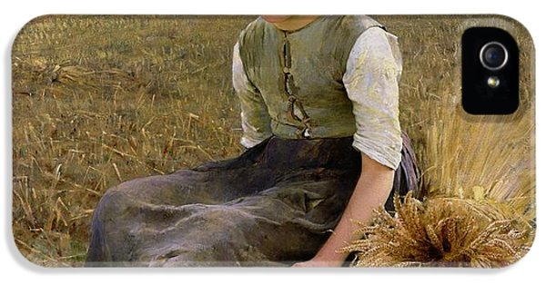 Rural Scenes iPhone 5 Case - The Little Gleaner by Hugo Salmson