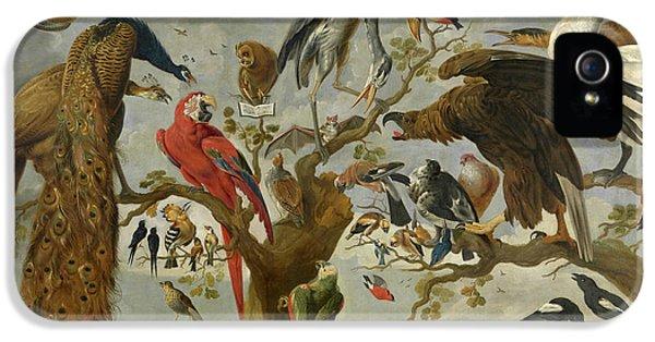 Meadowlark iPhone 5 Case - The Mockery Of The Owl by Jan van Kessel