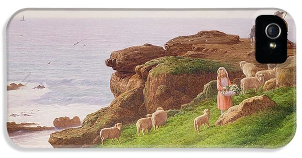 The Pet Lamb IPhone 5 Case by J Hardwicke Lewis