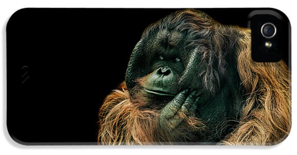 Ape iPhone 5 Case - The Sceptic by Paul Neville