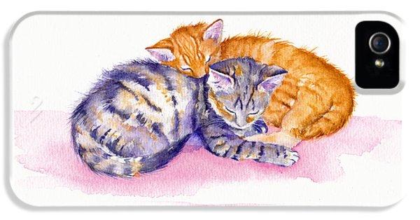Cat iPhone 5 Case - The Sleepy Kittens by Debra Hall