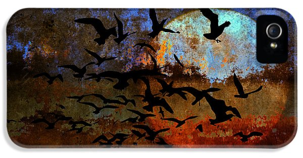 The Texture Of Our Dreams IPhone 5 Case by Ron Jones