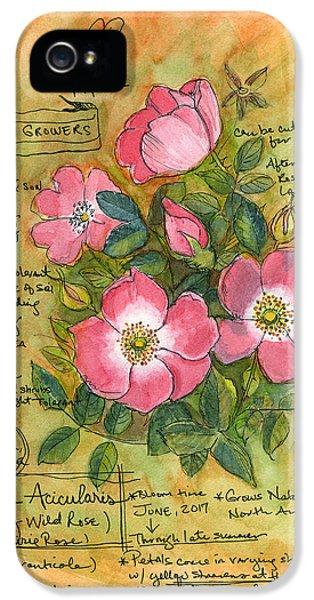 The Wild Rose IPhone 5 Case
