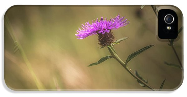 Thistle IPhone 5 Case