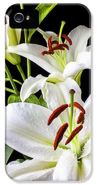 Three White Lilies IPhone 5 Case