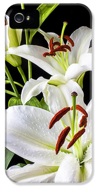 Lily iPhone 5 Case - Three White Lilies by Garry Gay