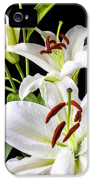 Three White Lilies IPhone 5 Case by Garry Gay