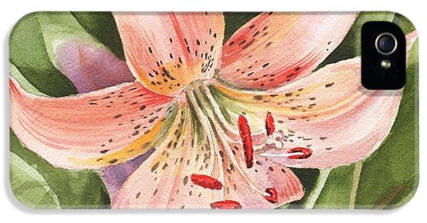 Tiger Lily Watercolor By Irina Sztukowski IPhone 5 Case
