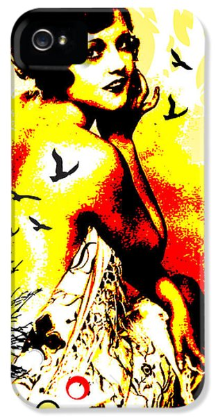 Stockings iPhone 5 Cases - Timeless Flight iPhone 5 Case by Chris Andruskiewicz