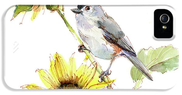 Titmouse iPhone 5 Case - Titmouse With Sunflower by John Keeling