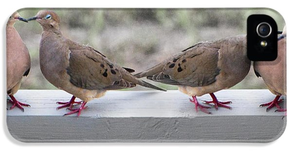 Together For Life IPhone 5 Case by Betsy Knapp