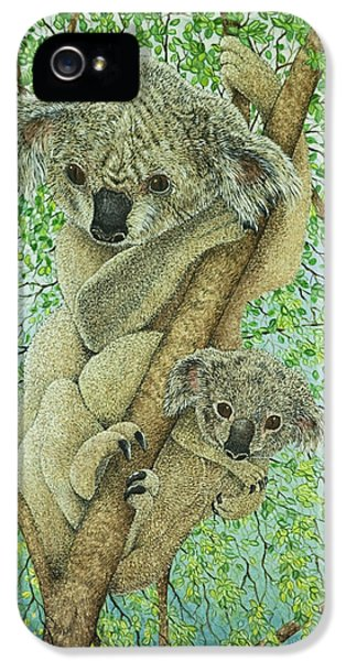 Top Of The Tree IPhone 5 Case by Pat Scott