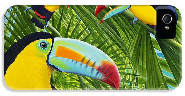 Toucan iPhone 5 Case - Toucan Threesome by Carolyn Steele