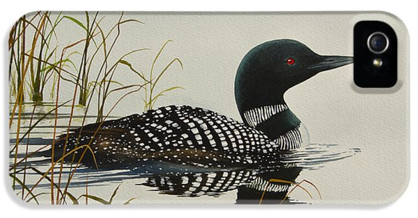 Loon iPhone 5 Case - Tranquil Stillness Of Nature by James Williamson
