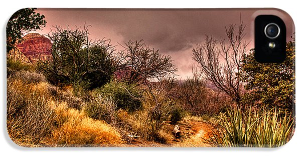Roadrunner iPhone 5 Case - Traveling The Trail At Red Rocks Canyon by David Patterson