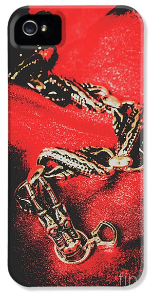 Pendant iPhone 5 Case - Treasures From The Asian Silk Road by Jorgo Photography - Wall Art Gallery