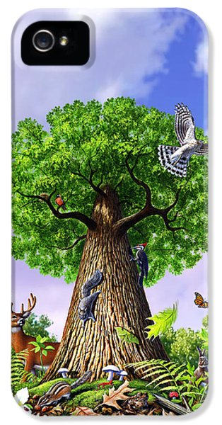 Hawk iPhone 5 Case - Tree Of Life by Jerry LoFaro