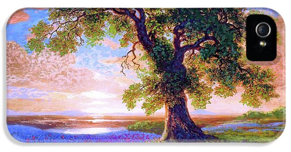 Tree Of Tranquillity IPhone 5 / 5s Case by Jane Small