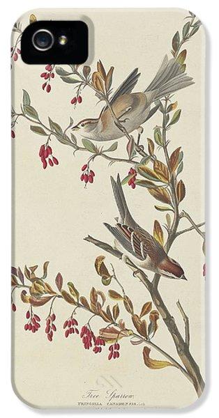 Tree Sparrow IPhone 5 Case