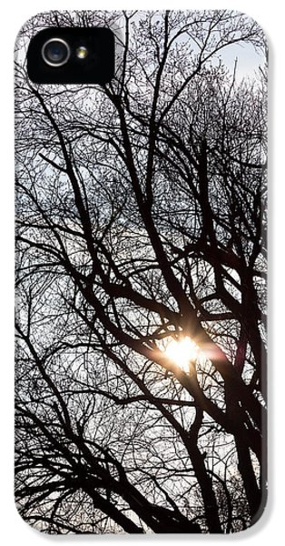 IPhone 5 Case featuring the photograph Tree With A Heart by James BO Insogna