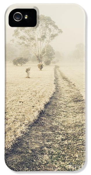 Trees In Fog And Mist IPhone 5 Case by Jorgo Photography - Wall Art Gallery