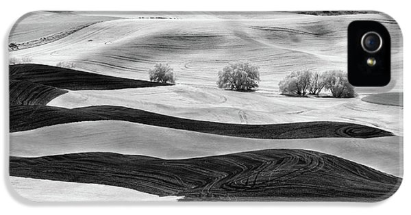 Trees In The Valley IPhone 5 Case by Jon Glaser